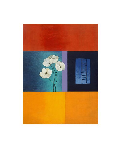 "Trademark Global Pablo Esteban White Flowers and Ladder Canvas Art - 27"" x 33.5"""