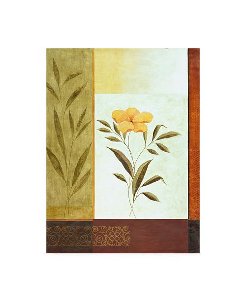 "Trademark Global Pablo Esteban Orange Flower and Leaves Canvas Art - 36.5"" x 48"""