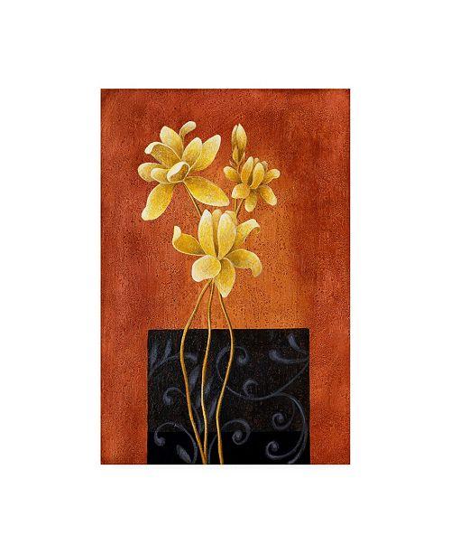 "Trademark Global Pablo Esteban Yellow Flowers on Orange Canvas Art - 27"" x 33.5"""