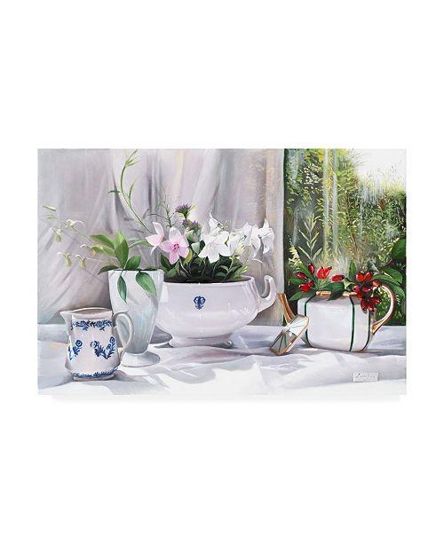 """Trademark Global Danka Weitzen Bacche Rosse Canvas Art - 36.5"""" x 48"""""""