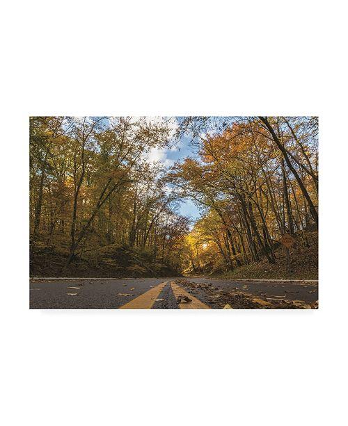 """Trademark Global Kurt Shaffer Photographs Into Autumn Canvas Art - 27"""" x 33.5"""""""
