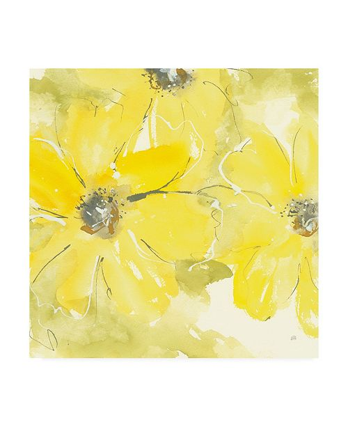 "Trademark Global Chris Paschke Sunshine Cosmos II Canvas Art - 15.5"" x 21"""