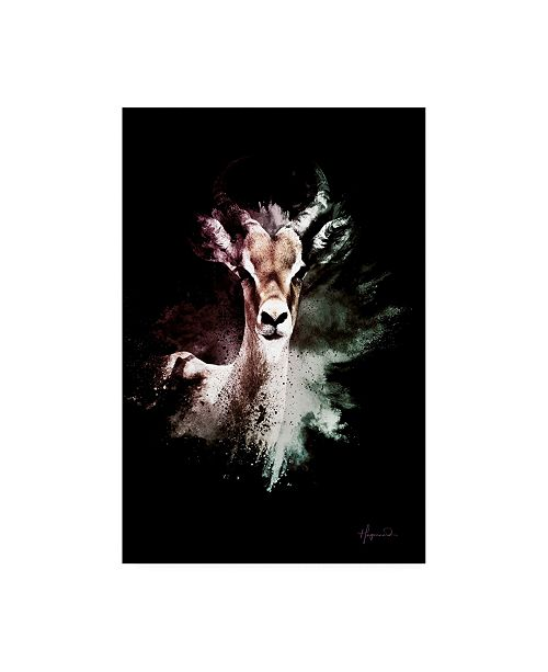 """Trademark Global Philippe Hugonnard Wild Explosion Collection - the Antelope Canvas Art - 19.5"""" x 26"""""""
