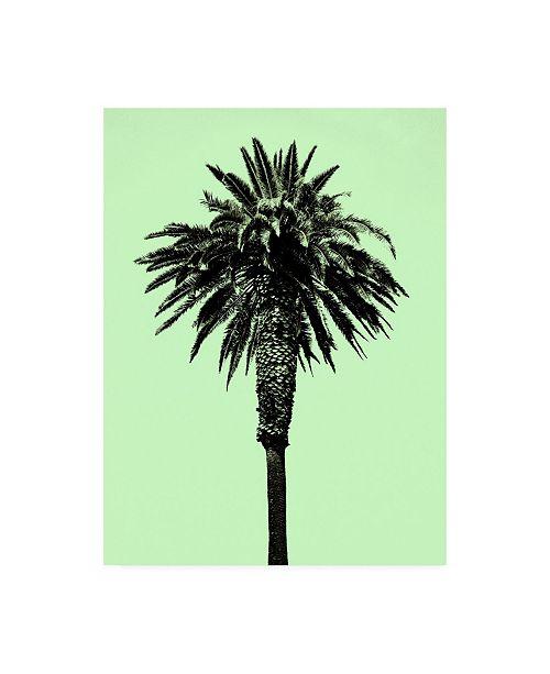 "Trademark Global Erik Asl Palm Tree 1996 (Green) Canvas Art - 27"" x 33.5"""