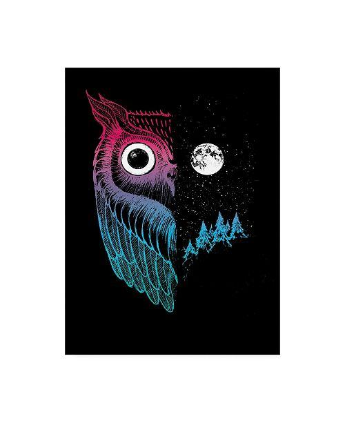 "Trademark Global Michael Buxto Night Owl Moon Canvas Art - 36.5"" x 48"""