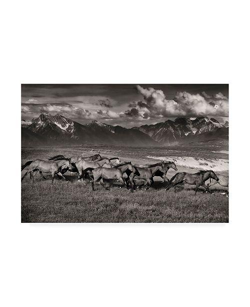 "Trademark Global Lisa Dearin Mountain Range Mavericks Canvas Art - 15.5"" x 21"""