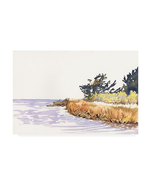 "Trademark Global Dianne Miller Solitary Coastline III Canvas Art - 20"" x 25"""