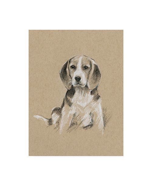 "Trademark Global Ethan Harper Breed Sketches I Canvas Art - 15"" x 20"""