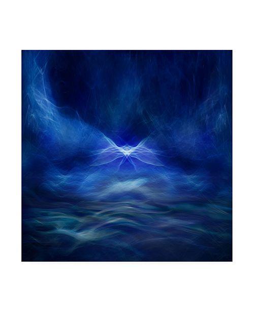 "Trademark Global Willy Marthinussen Fairy Tale Blue Canvas Art - 20"" x 25"""