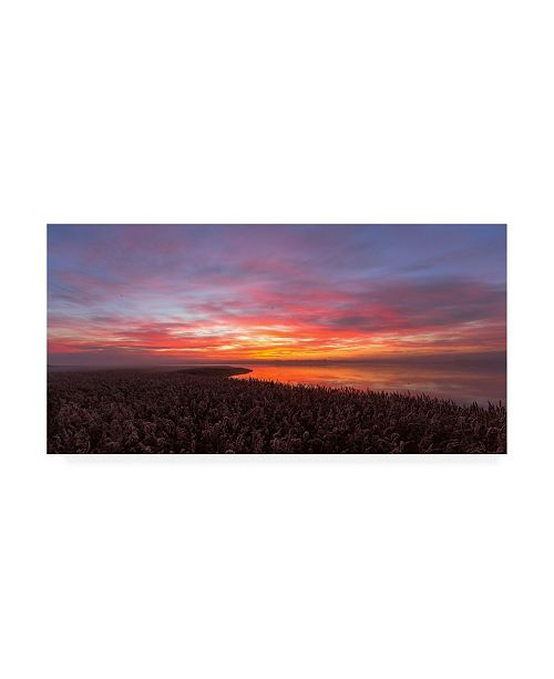 """Trademark Global Leif Londal Love a Morning Like this Canvas Art - 37"""" x 49"""""""