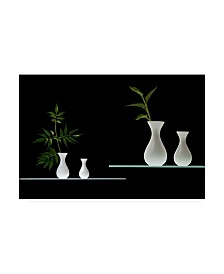 "Doris Reindl Greens in White Vases Canvas Art - 37"" x 49"""