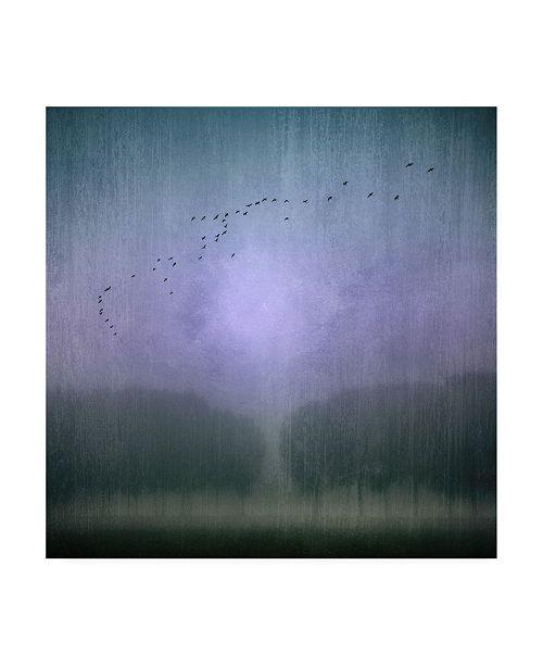 "Trademark Global Jacqueline Van Bijnen Blue Monday River Canvas Art - 15"" x 20"""