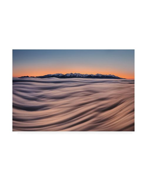 "Trademark Global Peter Kovacik Tatras Symphony Canvas Art - 37"" x 49"""