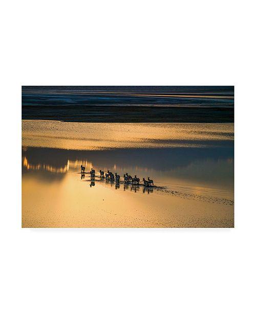 """Trademark Global John Fan Sunset Crossing Canvas Art - 15"""" x 20"""""""