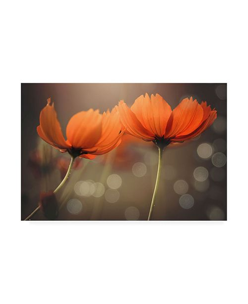 "Trademark Global Vu Thien Vu Friends Orange Flowers Canvas Art - 20"" x 25"""