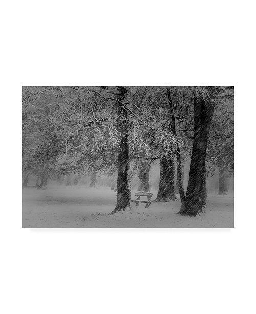 "Trademark Global Saskia Dingemans Transformation Winter Mastbos Canvas Art - 37"" x 49"""