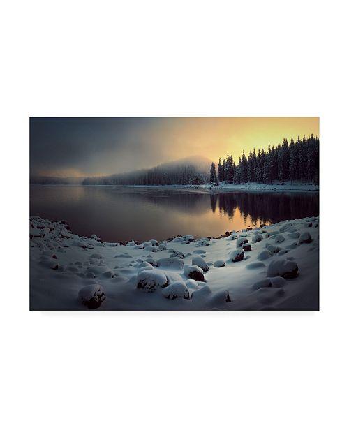 "Trademark Global Veselin Atanasov Shiroka Fog Canvas Art - 37"" x 49"""