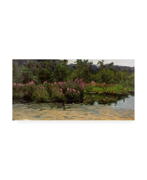 "Trademark Global Michael Budden Purple Lustrife Townsends Pond Canvas Art - 20"" x 25"""