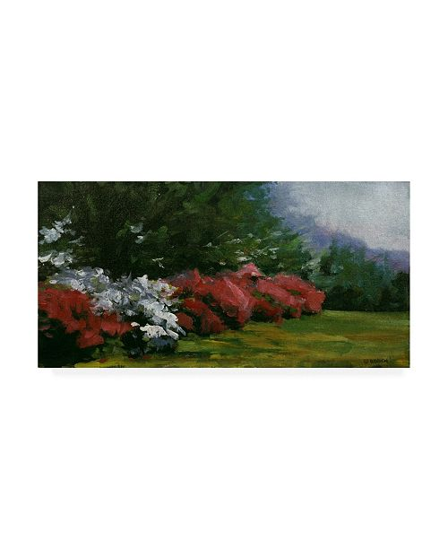 "Trademark Global Michael Budden Floral Fantasy Red White Canvas Art - 37"" x 49"""