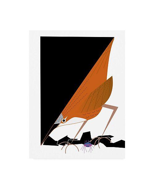 "Trademark Global Marie Sansone Canyon Wren Canvas Art - 37"" x 49"""