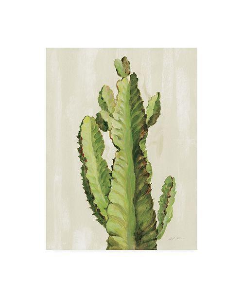 "Trademark Global Silvia Vassileva Front Yard Cactus II Canvas Art - 37"" x 49"""