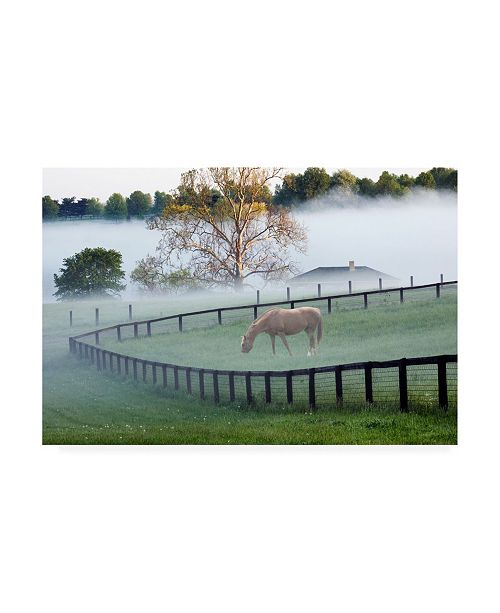 "Trademark Global Monte Nagler Horses in the Mist Kentucky Canvas Art - 15"" x 20"""