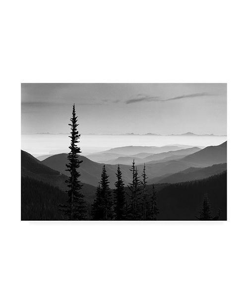 "Trademark Global Monte Nagler Hurricane Ridge Olympic Mountains Washington Canvas Art - 20"" x 25"""