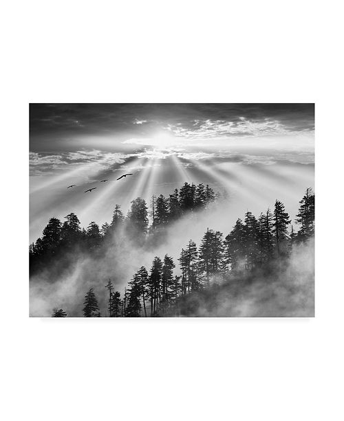 "Trademark Global Monte Nagler Smoky Mountain Sunrise Tennessee Black and White Canvas Art - 20"" x 25"""