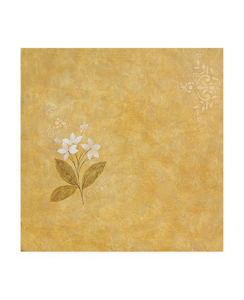 "Trademark Global Pablo Esteban White Flower Stencil Canvas Art - 15.5"" x 21"""