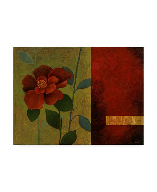 "Trademark Global Pablo Esteban Red Flower Over Dark Panels 2 Canvas Art - 27"" x 33.5"""