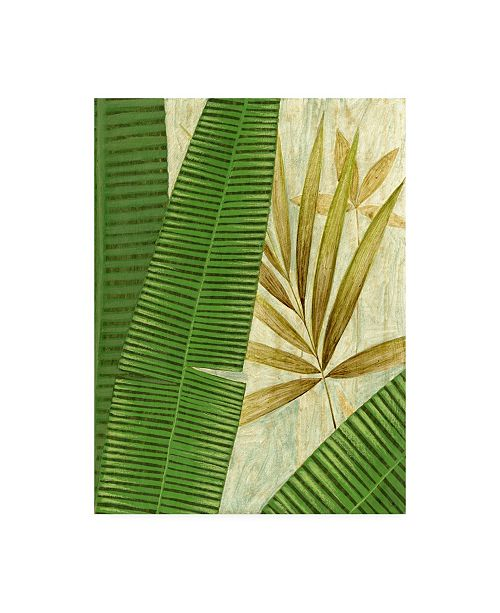 "Trademark Global Pablo Esteban Tall Wide Palm Canvas Art - 19.5"" x 26"""