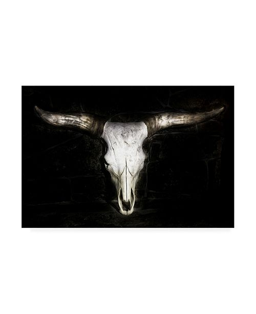"Trademark Global PH Burchett Cow Skull Canvas Art - 27"" x 33.5"""