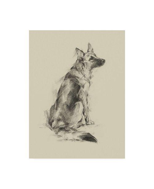 "Trademark Global Ethan Harper Puppy Dog Eyes V Canvas Art - 27"" x 33.5"""