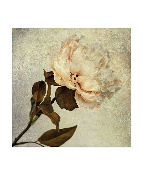 "Trademark Global Honey Malek Lush Vintage Florals II Canvas Art - 15.5"" x 21"""