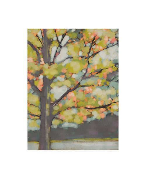 "Trademark Global Chariklia Zarris Dappled Dusk III Canvas Art - 15.5"" x 21"""