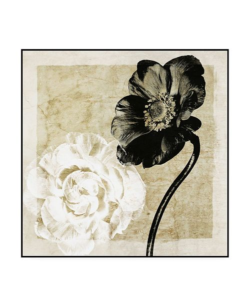 "Trademark Global Christine Zalewski Light from Darkness I Canvas Art - 36.5"" x 48"""
