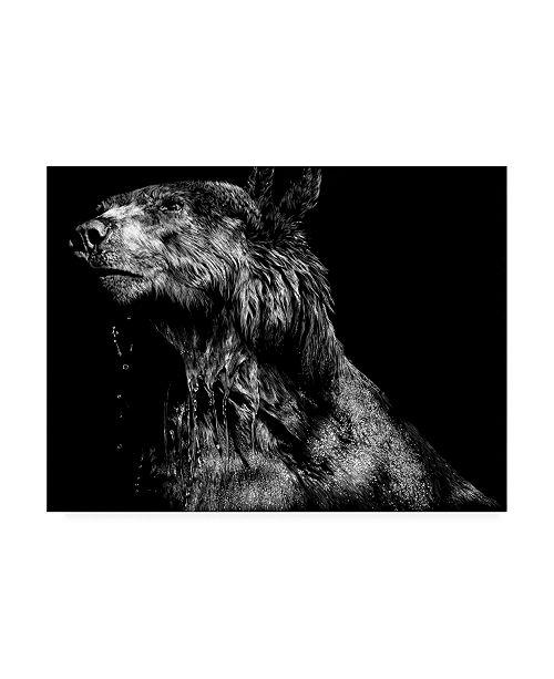 """Trademark Global Julie T. Chapman Ursa Major Bear Canvas Art - 15.5"""" x 21"""""""