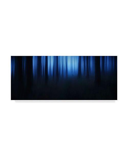 """Trademark Global Burger Jochen Blue Hour Lights Canvas Art - 37"""" x 49"""""""
