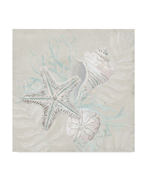 "Trademark Global June Erica Vess Weathered Shell Sketch I Canvas Art - 15"" x 20"""