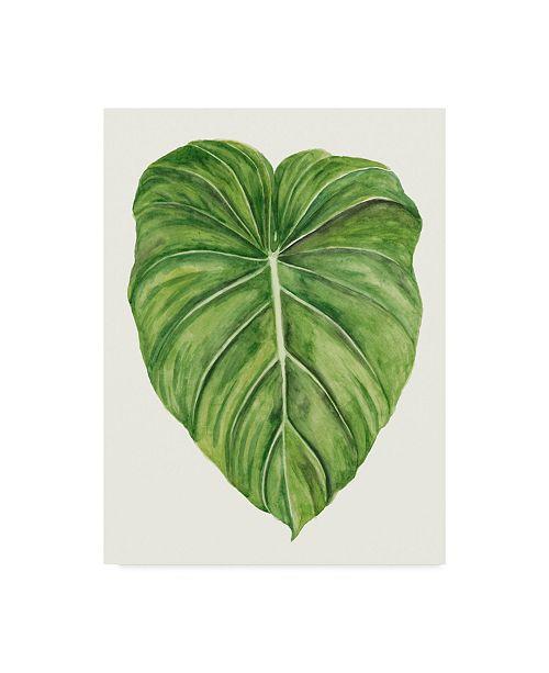 "Trademark Global Naomi Mccavitt Tropical Breeze Leaves II Canvas Art - 20"" x 25"""