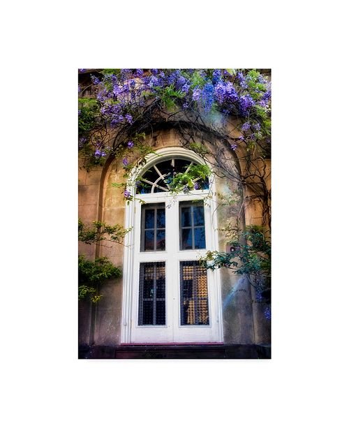 "Trademark Global Danny Head White Wisteria Canvas Art - 20"" x 25"""