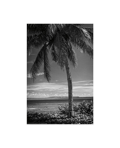 """Trademark Global Debra Van Swearingen Ocean View Bw Canvas Art - 15"""" x 20"""""""