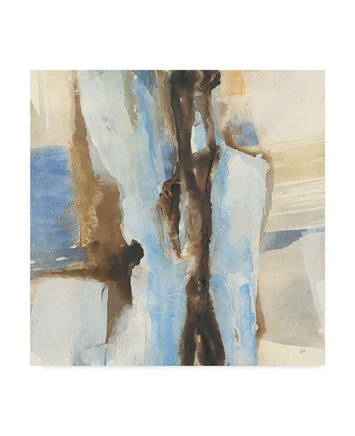 """Trademark Global Chris Paschke River Run I Canvas Art - 27"""" x 33"""""""