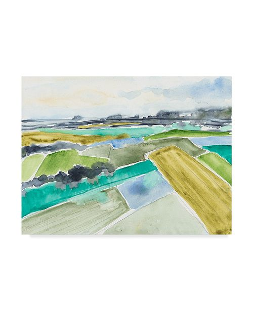 "Trademark Global Jennifer Goldberger Watercolor Field I Canvas Art - 37"" x 49"""