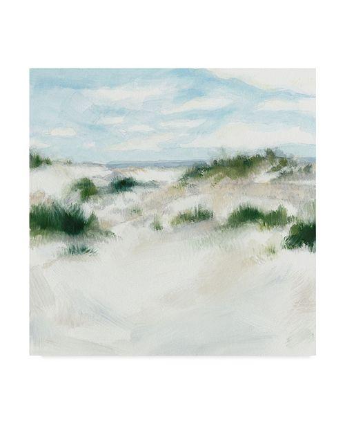 "Trademark Global Megan Meagher White Sands I Canvas Art - 15"" x 20"""