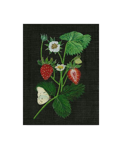 "Trademark Global Melissa Wang Strawberry Fields I Canvas Art - 20"" x 25"""