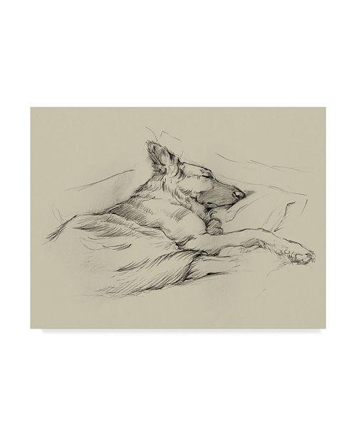 "Trademark Global Ethan Harper Dog Days IV Canvas Art - 37"" x 49"""
