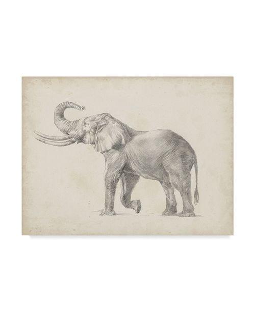 "Trademark Global Ethan Harper Elephant Sketch I Canvas Art - 20"" x 25"""