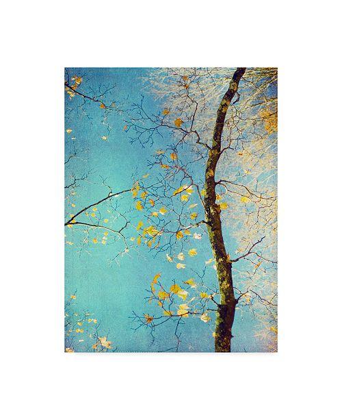 "Trademark Global Judy Stalus Autumn Tapestry III Canvas Art - 37"" x 49"""