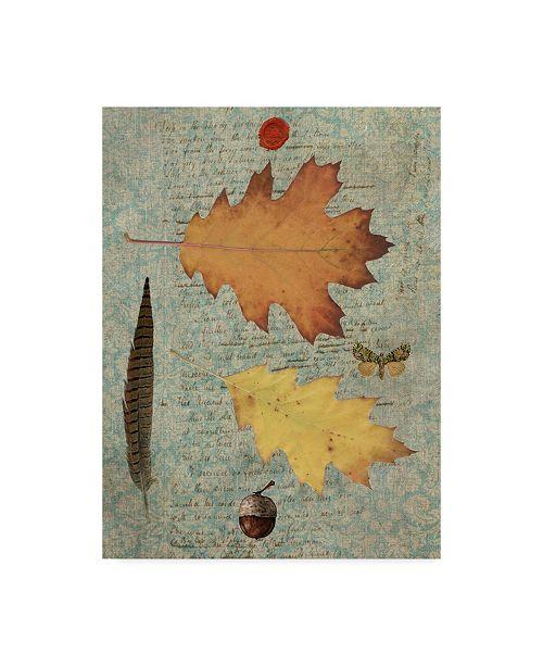 "Trademark Global Sandy Lloyd Autumn Leaf III Canvas Art - 37"" x 49"""